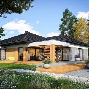 Proiecte de case mari
